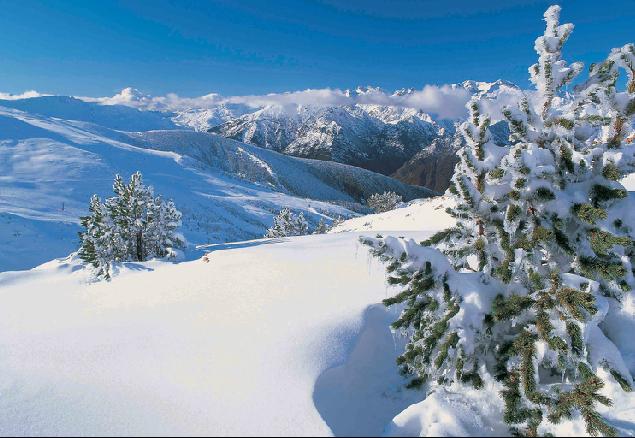 cómo fotografiar la nieve