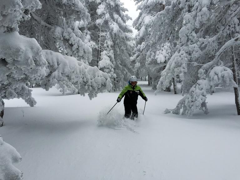 Un esquiador, disfrutando de la nieve polvo recién caída