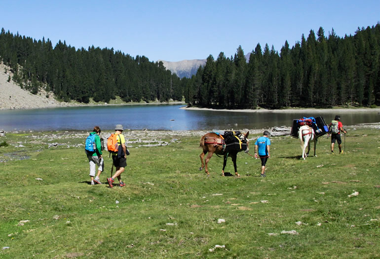 trekkingmule-excursion-Basa-Mora