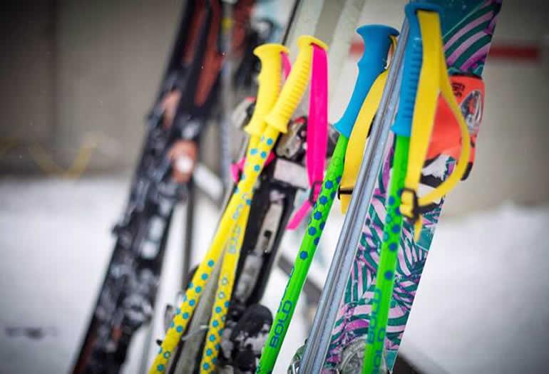 Image result for Bastones de esqui