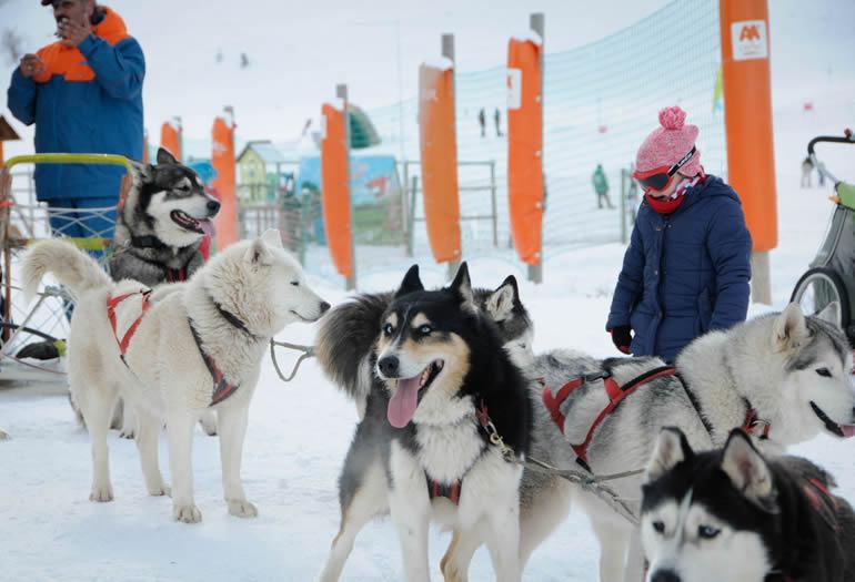 Motos de nieve, raquetas, mushing y mucho más en Ampriu Park