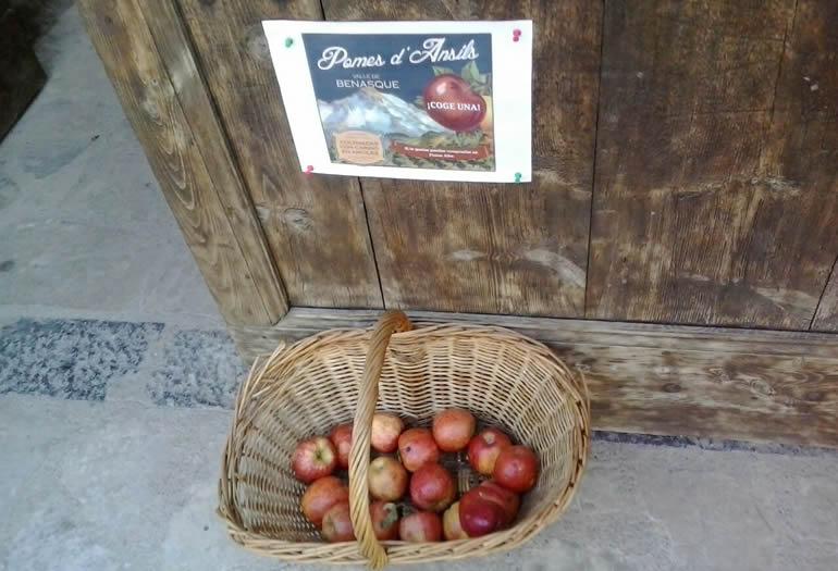 Anciles manzanas