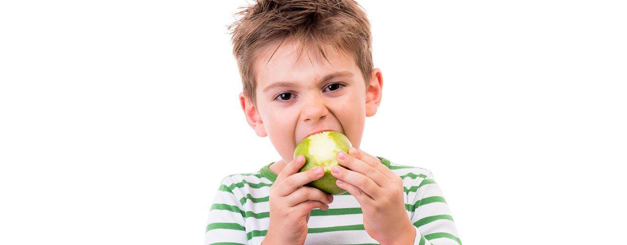 Consejos sobre qué comida llevar en un viaje con niños