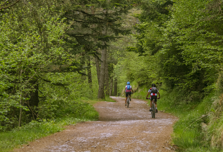 Las mejores rutas en bici por la sierra de Gúdar-Javalambre