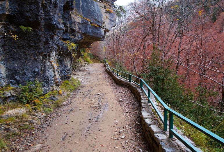 Tiempo de otoño, tiempo de setas, chocolate… y paseos sin nieve