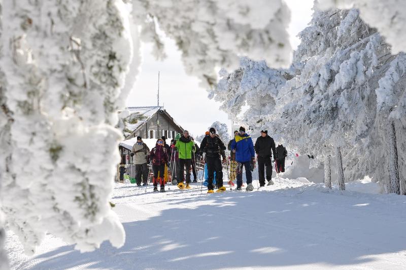 Telemark, speedriding, raquetas… ¿cuál es tu especialidad?