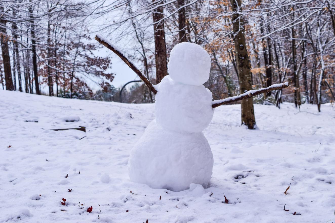 Cómo hacer muñecos de nieve ¡El plan en familia perfecto!
