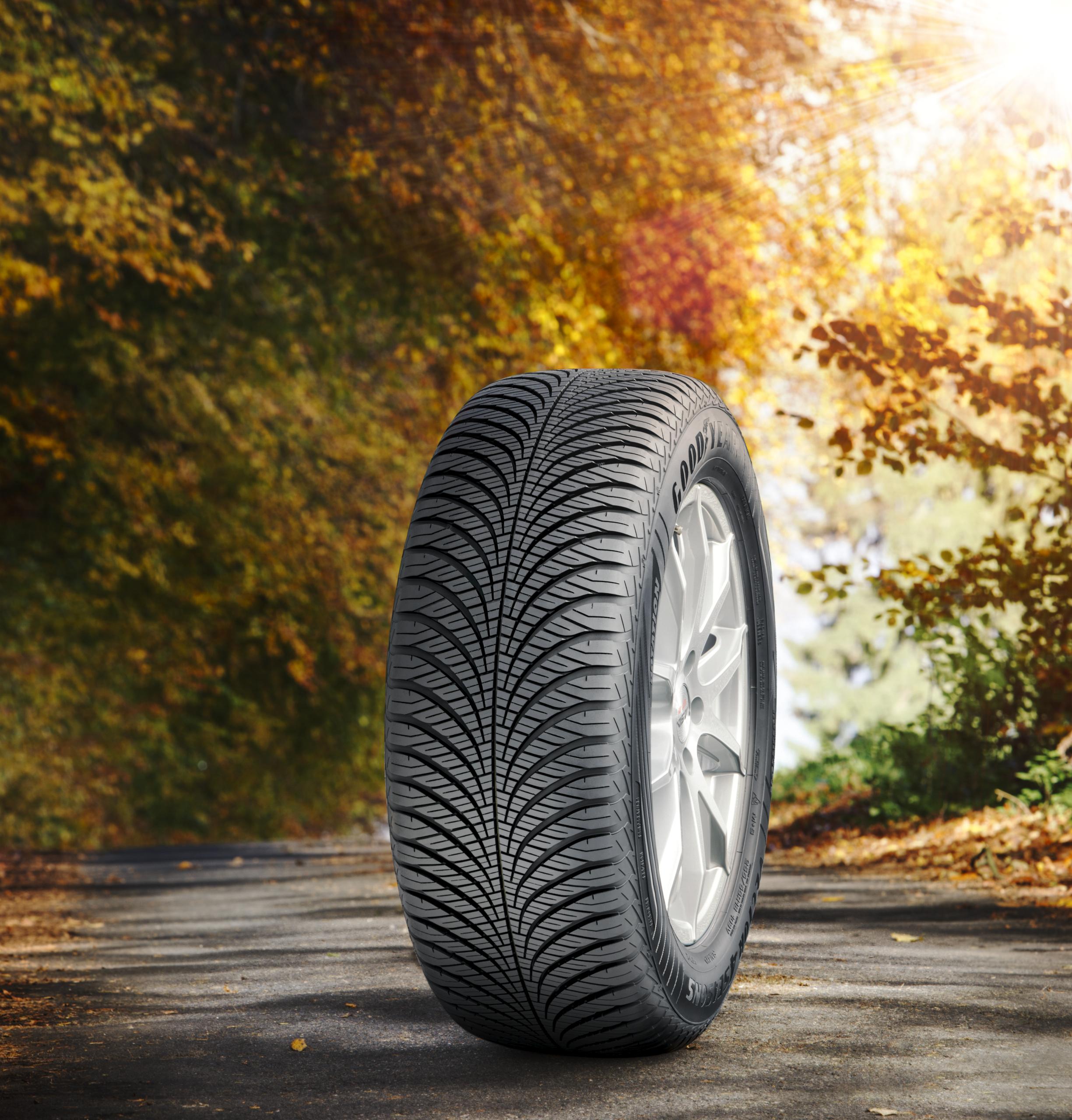 Vector 4Seasons Cargo se suma a la familia de neumáticos todo tiempo de Goodyear