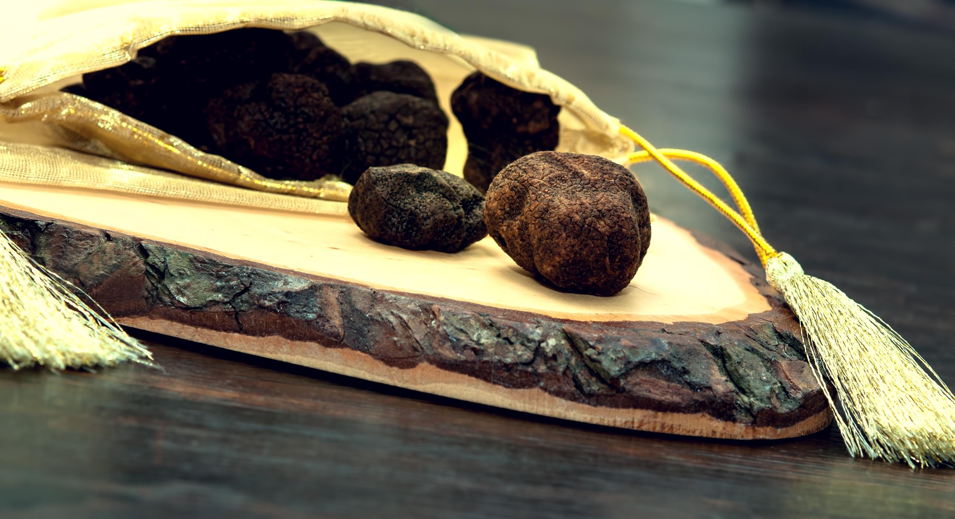 ¿Dónde comprar trufa negra y fresca en Teruel?