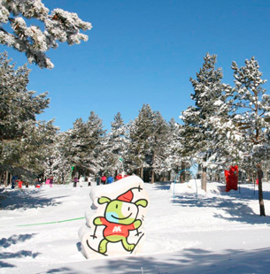 Jardin nieve valdelinares